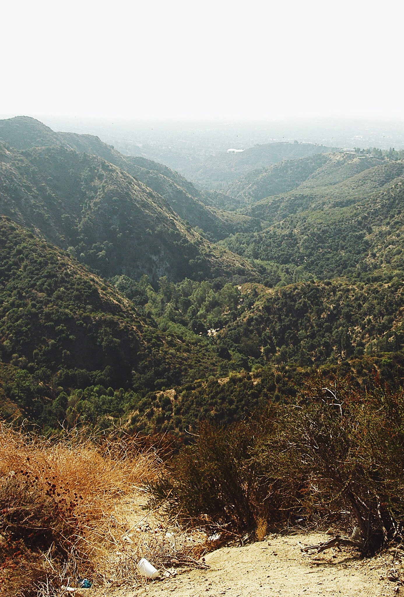 View from Angeles National Forest