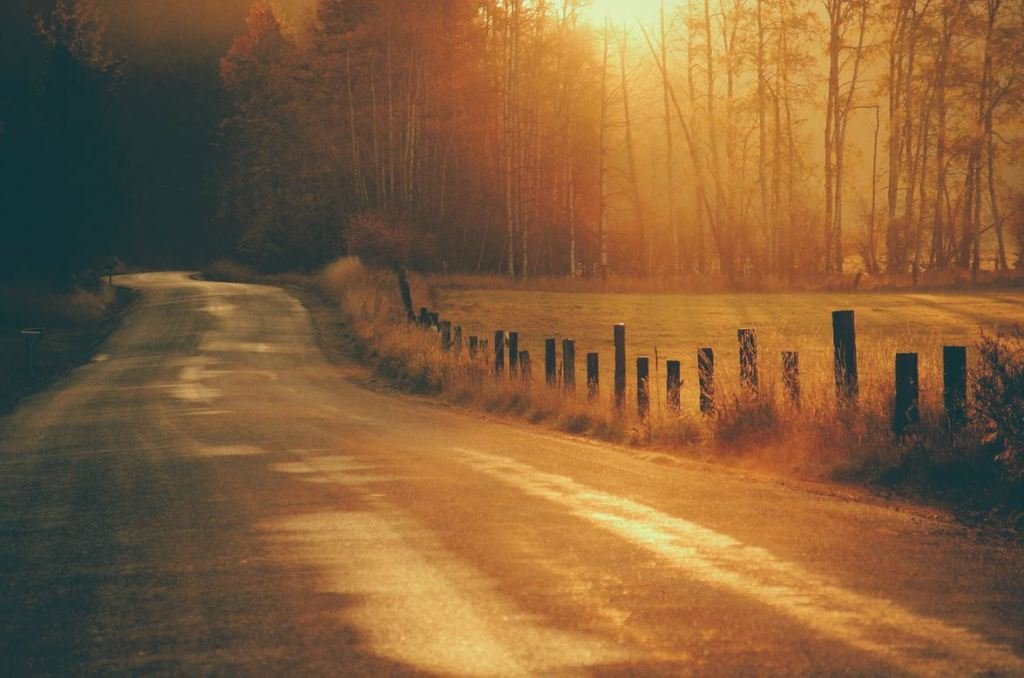 A country road at Golden hour